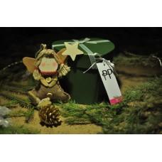 Подарочный набор с вискозными трусиками Pretty Polly (Прити Полли) Katreena (6 шт) 0116